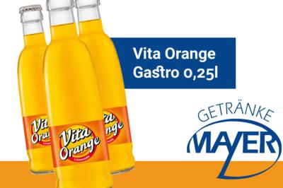 Vita Orange Gastro 0,25l